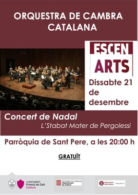 Concert de Nadal a càrrec de l'Orquestra de Cambra Catalana