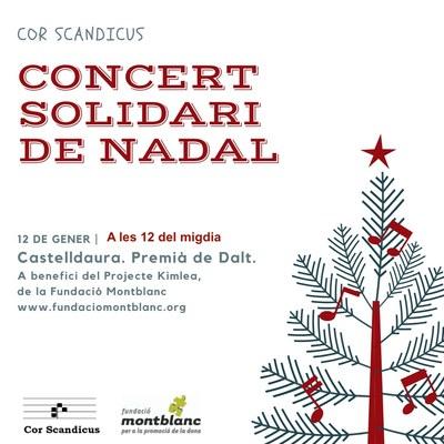 Concert Solidari de Nadal amb el Cor Scandicus