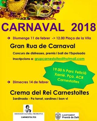 Gran Rua de Carnaval