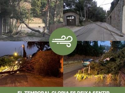 El temporal Gloria, portada del butlletí municipal del mes de febrer
