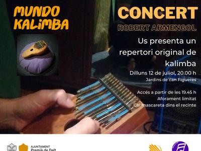 L'Escola Municipal de Música programa un concert de kalimba